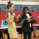 Students holding a large snake while doing a presentation.